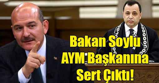 Kararın İptali Üzerine, Bakan Soylu AYM Başkanına Sert Çıktı!