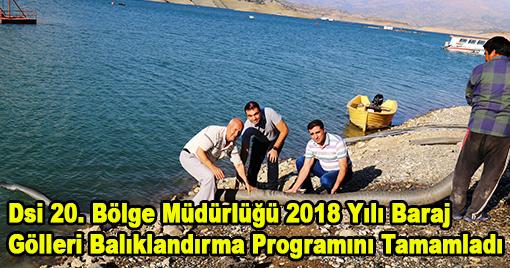 Dsi 20. Bölge Müdürlüğü 2018 Yılı Baraj Gölleri Balıklandırma Programını Tamamladı