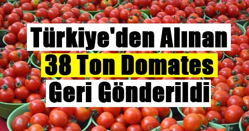 Türkiye'den Alınan 38 Ton Domates Geri Gönderildi