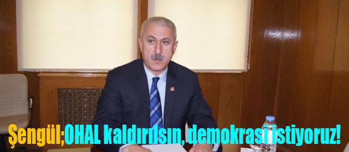 Şengül'den basın bildirisi,OHAL kaldırılsın,demokrasi istiyoruz!