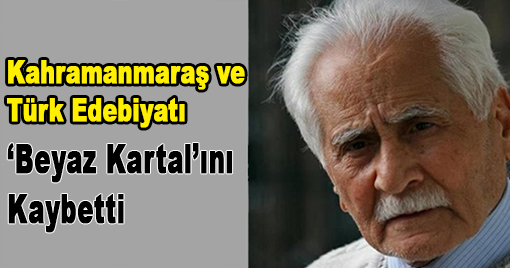Türk Edebiyatı