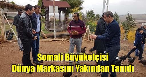 Somali Büyükelçisi Dünya Markasını Yakından Tanıdı
