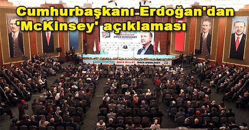 Başkan Erdoğan'dan 'McKinsey' açıklaması