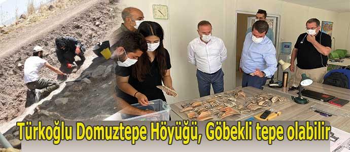 Türkoğlu Domuztepe Höyüğü, Göbekli tepe olabilir